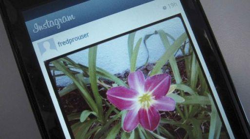 Anti-Facebook. Ante la compra de la red social de Instagram, muchos temen que los planes de Zuckerberg arruinen la popular aplicación de fotografíasl. (Foto: Reuters)