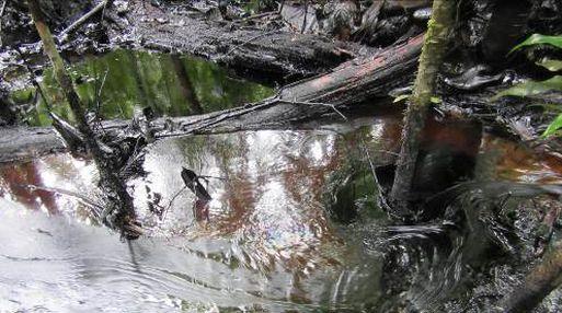 Oefa constató que el derrame de petróleo afectó suelo superficial, quebradas y ríos. (Foto: OEFA)