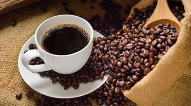 Sequía en Brasil transforma al café en el mejor producto del 2017