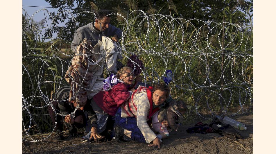 Reuters, fotografía, Premio Pulitzer