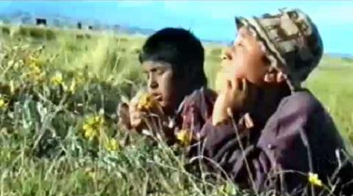 """Película """"El huerfanito"""", de Flaviano Quispe (2004) tuvo más de 600,000 espectadores."""