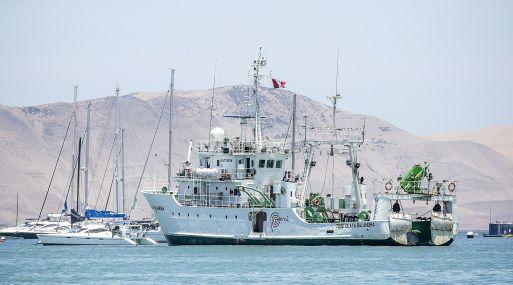 Pesca de anchoveta ha contribuido con el 0.7% del PBI. (Foto: Difusión)