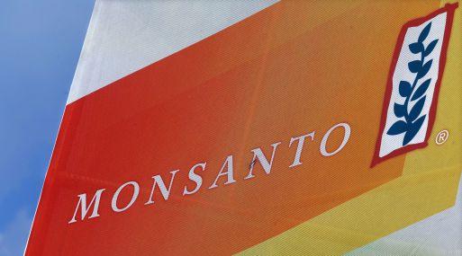 El beneficio de Monsanto para el ejercicio 2015/2016 fue de US$ 1,340 millones. (Foto: AP)