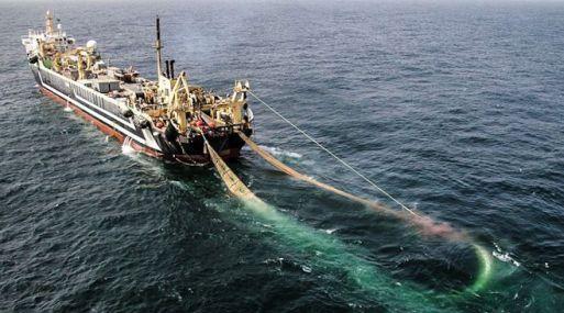 Viceministro Soldi aseguró que no existe ninguna evidencia de la pesca ilegal de barcos chinos.