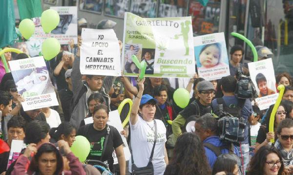 Cientos marchan por legalización de marihuana medicinal - Noticias de