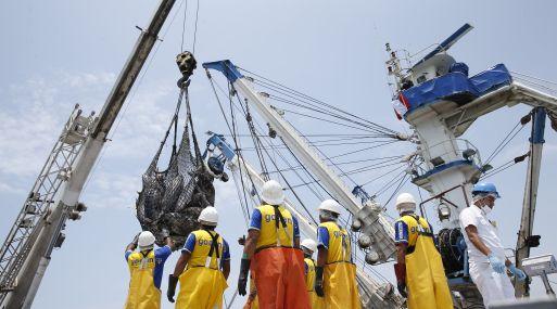La pesca no tradicional exportó en el periodo de análisis US$ 700 millones. (Foto: USI)