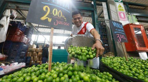 Precio del limón bajó y se encuentra desde 2 soles el kilo