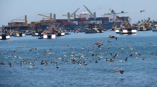 Ilo: Empresarios bolivianos visitan puerto moqueguano