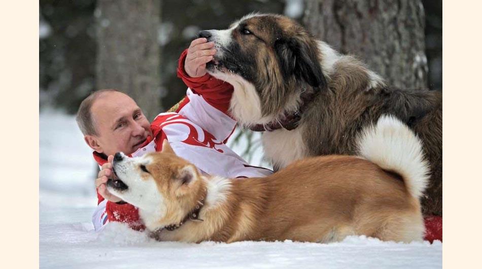 Putin, rusia, fotos, animales