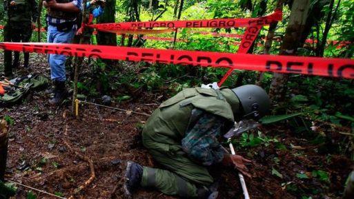Según Fiallo Vásquez, el trabajo realizado ha desminado 506,000 metros cuadrados en esas provincias, y se han destruido cerca de 12,000 minas antipersonales, 74 minas antitanque y 27 explosivos abandonados.