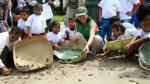 Liberan 5,000 crías de tortugas en la Amazonía de Perú incubadas para su repoblación - Noticias de regiones del perú