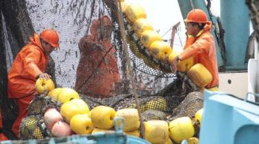 Foncopes acumula S/ 51 millones para reconversión laboral de expescadores: ¿Cuántos se acogieron?