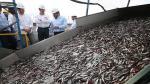 Gabinete Binacional Perú - Ecuador: Estos son los acuerdos acuícolas y de pesca - Noticias de promociones