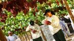 Las 'movidas' empresariales de la semana - Noticias de pluspetrol