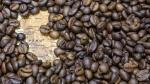 Productores de Junín enviarán 35 toneladas de café especial al Reino Unido - Noticias de ocex
