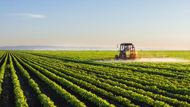Agroindustria sorprende y toma relevancia en mercado de M&A
