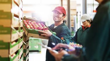 Sector Manufacturero: ¿Cómo les va a las industrias este año?